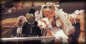 Kermit_pig_wed